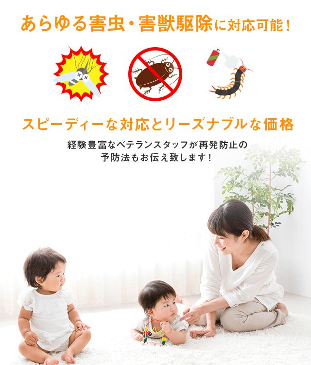 あらゆる害虫・害獣駆除に対応可能!